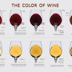 Как да опитваме вино