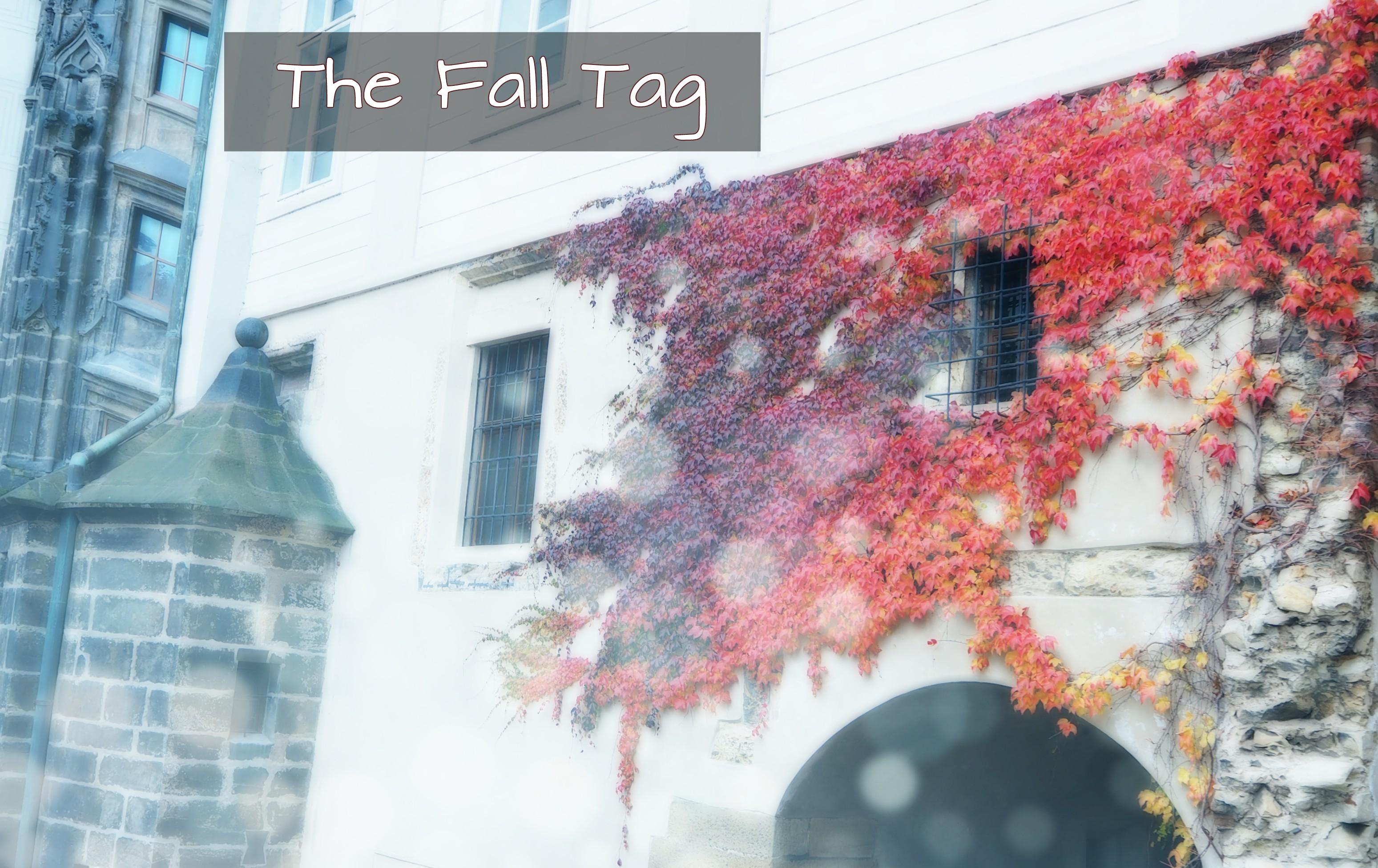 fall tag