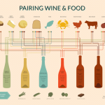 Food and Wine Infographic