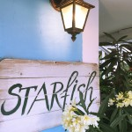 Food Heaven: Starfish in Chernomoretz, Bulgaria